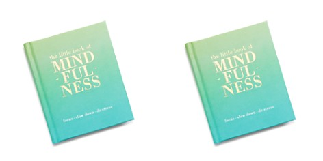 Chronicle Books The Little Book of Mindfulness - Bloomingdale's_2