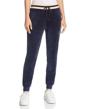 JUICY COUTURE BLACK LABEL Luxe Velour Sweatpants in Royal Navy