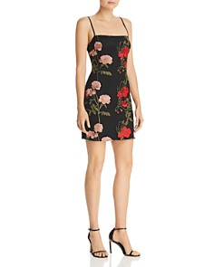 Donna Mizani - Renee Embroidered Mini Dress