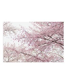 Art Addiction Inc. - Cherry Blossoms Wall Art