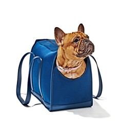 Wild One - Pet Carrier