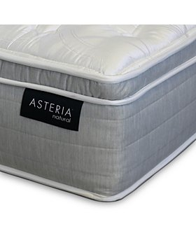 Asteria - Daria Euro Pillow Top Mattress Collection - 100% Exclusive