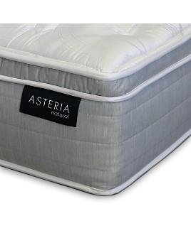 Asteria - Daria Euro Pillow Top Mattress Collection - 100% Exclusive