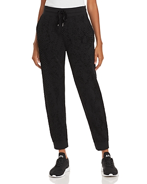 Rails Oakland Sweatpants-Women