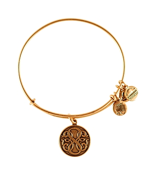 Alex and Ani Path of Life Infinity Bangle