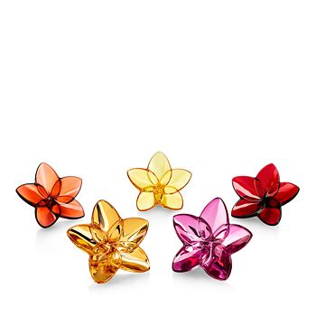 Baccarat - Bloom Flower Power, Set of 5