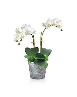 Diane James Home - Blooms Small Orchid Faux Floral Arrangement