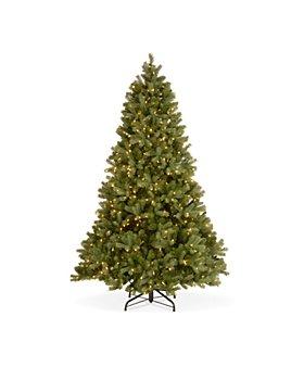 National Tree Company - 6.5 ft. Downswept Douglas® Fir Tree with Clear Lights