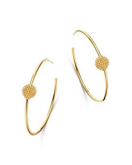 Bloomingdale's - Beaded Ball Hoop Earrings in 14K Yellow Gold - 100% Exclusive