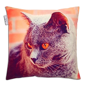 Madura Barnie 3 Decorative Pillow Cover, 16 x 16