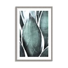 Art Addiction Inc. - Succulent Up Close Wall Art - 100% Exclusive