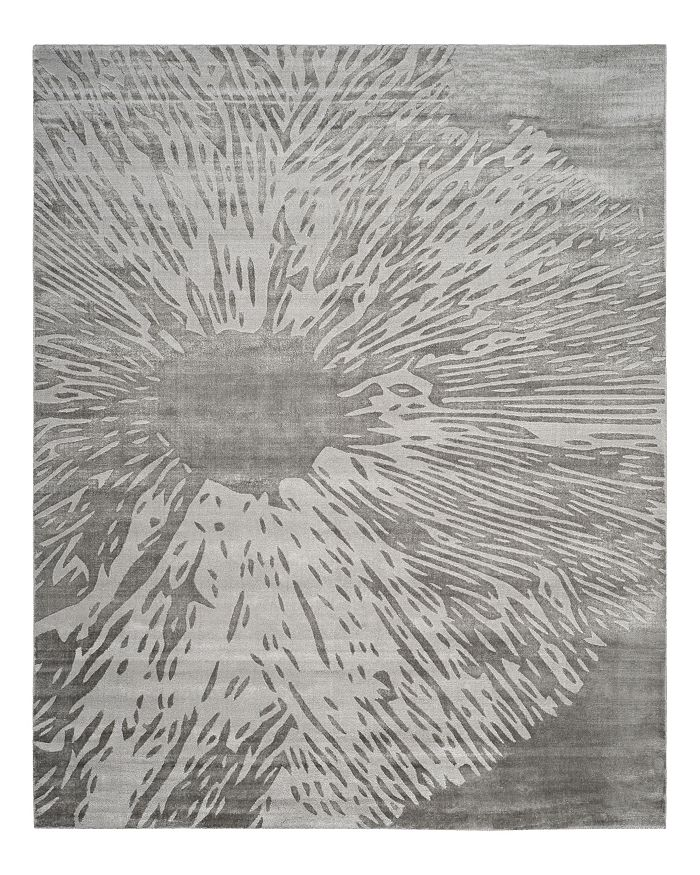 SAFAVIEH - Expression Collection Long Beach Area Rug, 8' x 10'