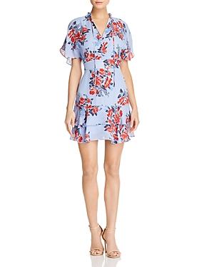 Parker Natalie Printed Silk Dress