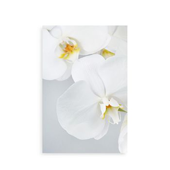 "Art Addiction Inc. - Orchids Wall Art, 24"" x 36"""