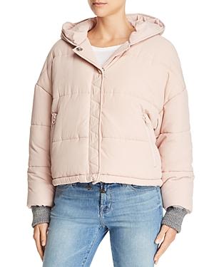 Splendid Hooded Puffer Jacket