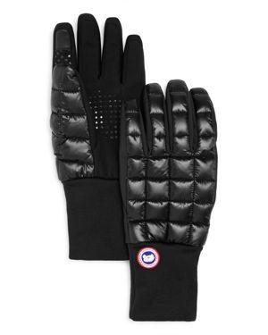 Northern Glove Liner, Black