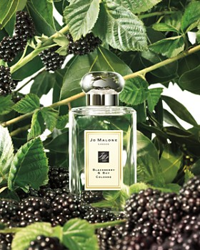 Jo Malone London - Blackberry & Bay Collection