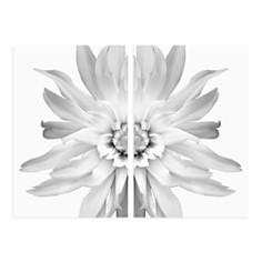 Art Addiction Inc. - Floral Diptych Small Wall Art