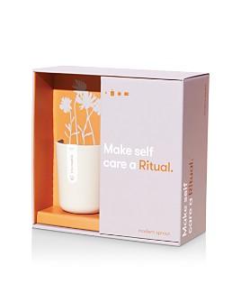 Modern Sprout - Ritual Tea Gift Set