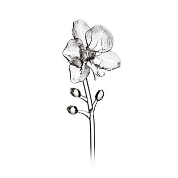 Waterford - Jeff Leatham Fleurology Orchid Flower Object