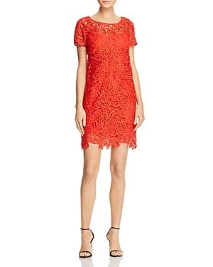 Milly Chloe Lace Dress