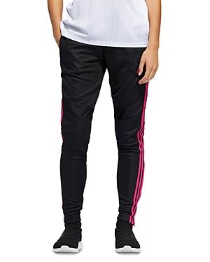 Adidas Originals Pants TIRO 19 TRAINING PANTS