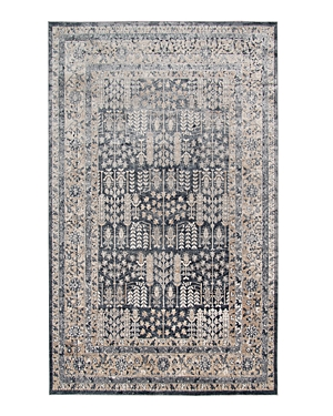 Amer Rugs Belmont Blm-3 Area Rug, 8'7 x 11'6