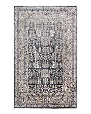 Amer Rugs Belmont Blm-3 Area Rug, 5\\\'3 x 7\\\'7-Home
