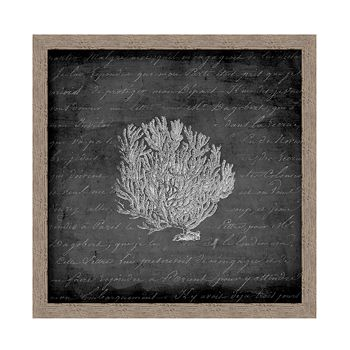 PTM Images - Sea Fan I Wall Art