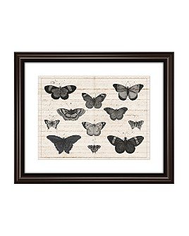 PTM Images - Butterfly Study Wall Art
