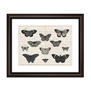 These butterflies artfully evoke vintage scientific drawings. Distinctive designs by Ptm Images add instant character to any room.