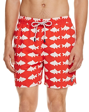 Tom & Teddy Fish Swim Trunks