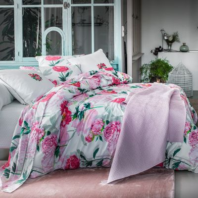 Leonie Embroidered Standard Sham - 100% Exclusive