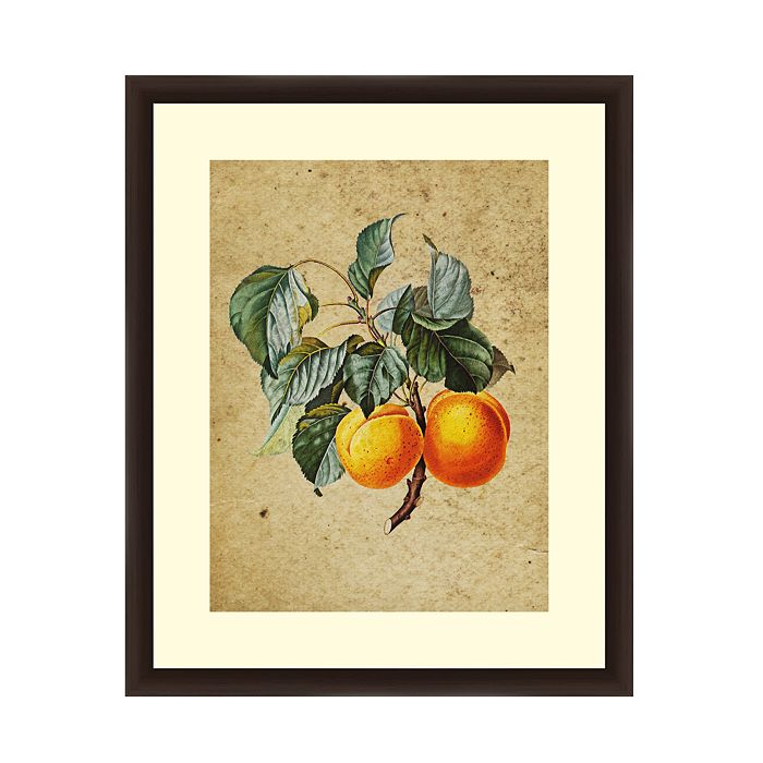 PTM Images - Vintage Apricot Wall Art