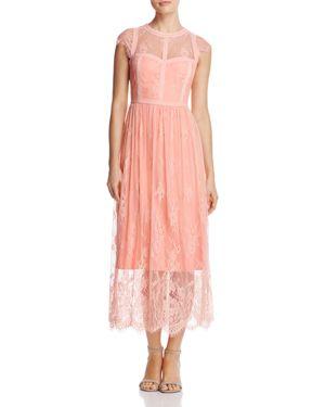 Parker Black Tesoro Lace Dress