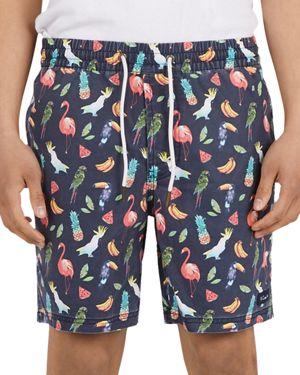 Barney Cools Poolside Amphibious Shorts