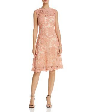 Tadashi Shoji Sheer Yoke Lace Dress