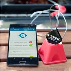 Charcoal Companion - Q-Tech Bluetooth Thermometer