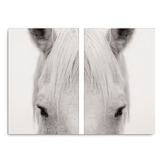"Art Addiction Inc. Equus Diptypch Wall Art, 45"" x 30"" - Bloomingdale's_0"