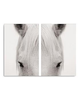 """Art Addiction Inc. - Equus Diptypch Wall Art, 45"""" x 30"""""""
