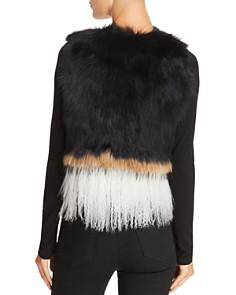 525 America - Real Asiatic Raccoon Fur & Mongolian Lamb Vest