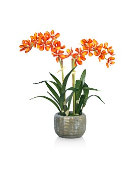 Diane James Home - Vanda Orchid Blooms Faux-Floral Arrangement