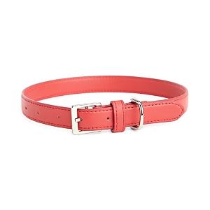 Royce New York Luxe Medium Dog Collar