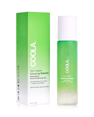 Glowing Greens Detoxifying Facial Cleansing Gel 5 oz.