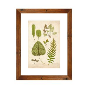 Ptm Images Leaf Sheet I Wall Art