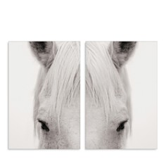 "Art Addiction Inc. Equus Diptypch Wall Art, 36"" x 24"" - Bloomingdale's_0"