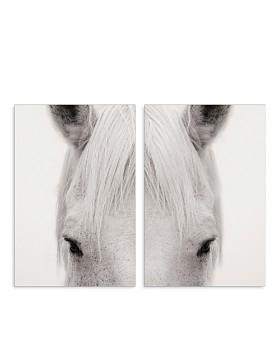 Art Addiction Inc. - Equus Diptypch Wall Art