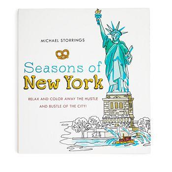 Michael Storrings Seasons Of New York Coloring Book