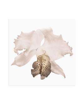 Art Addiction Inc. - White Floral Art Collection