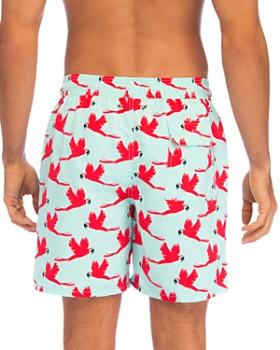 2eba8bdc811 TOM & TEDDY Men's Designer Swimwear: Swim Trunks & Shorts ...